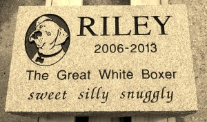 Riley Pet Marker